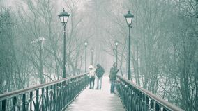 Bridge in a Snowstorm. Winter in the city park stock video footage