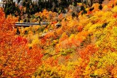 A bridge spans among fall colors. Stock Photo