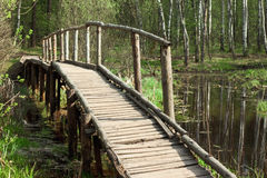 Bridge in a spring forest Stock Photo