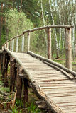 Bridge in spring forest Stock Photography