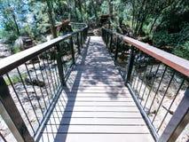 Bridge in Springbrook Park in Australia. Trekking circuit stock image