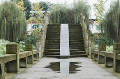 Bridge through lotus pond. Stone arch bridge through lotus pond after rain Stock Photography