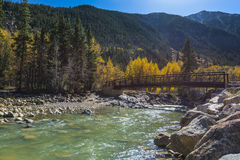Bridge on a Stream San Isabel National Forest Royalty Free Stock Images