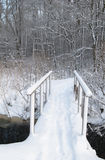 bridge through a stream in winter park Stock Photo