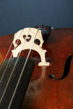Bridge and strings of cello. Close up of bridge and strings of cells Royalty Free Stock Photography