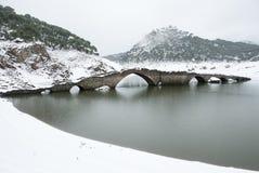 Bridge in the swamp of san juan Stock Photo
