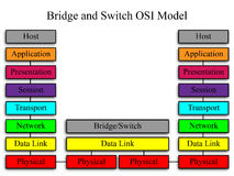 Bridge and Switch OSI Network Model. An image of the OSI network model with a bridge and switch example Royalty Free Stock Images