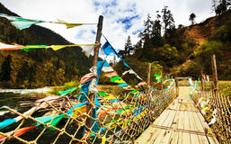 Bridge in tibet. The bridge in tibet with colorful flag royalty free stock images