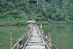Bridge to the deep jungle Royalty Free Stock Photography