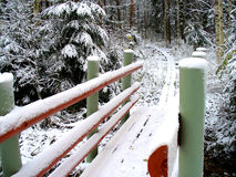 Bridge to forest. Small bridge into snow forest Stock Image