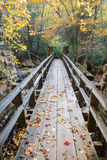 Bridge to the Forest. A swinging bridge crosses Glade Creek in Babcock State Park, West Virginia royalty free stock photo