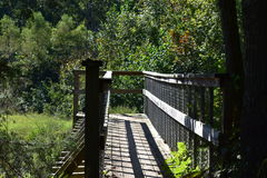 Bridge to the forest on top small river. Forest of the dense vegetation, this was in Kentucky in a sunny day at the end of the summer Royalty Free Stock Photos