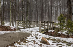 Bridge to Forest Trail in Winter. At Stumpy Lake in Virginia Beach, Virginia Royalty Free Stock Photo