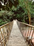 Bridge to the forest royalty free stock photo