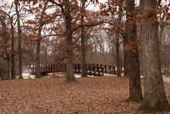 Bridge to a Frozen Fall Forest. Monochromatic view of bridge in an oak forest in late fall. Fallen leaves capret foreground with some snow in the backgound Royalty Free Stock Photography