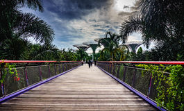 Bridge to Future Gardens. The Dragonfly bridge which grants entrance to the famous Gardens by the Bay in Singapore Royalty Free Stock Photo