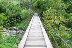 Bridge to the jungle Royalty Free Stock Photo