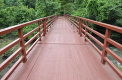 Bridge to the jungle,Khao Yai national park Royalty Free Stock Photography