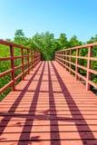 Bridge to mangrove forest Royalty Free Stock Photo