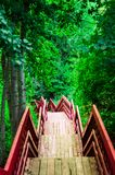 Bridge to nowhere. Forest, park stock photo