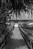 Bridge to the ocean Royalty Free Stock Photos
