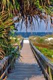 Bridge to the ocean Royalty Free Stock Image