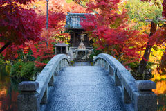 Bridge to a pond island with a small Japanese prayer shrine and red fall maple trees Stock Photo