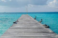 Bridge to sea Stock Images