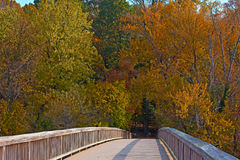 A bridge to Theodore Roosevelt Island Park with trees in autumn foliage in Washington DC, USA. Royalty Free Stock Image