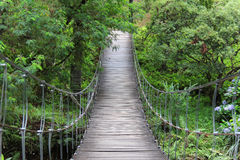 Bridge to tranquility. Bridge at the middle of nature Stock Photography