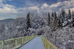 Bridge to the winter forest Royalty Free Stock Image