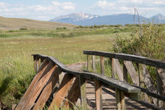 Bridge to a Wooden Walkway. This bridge in the Arapaho National Wildlife Refuge crosses a small creek in a riparian area, in the high plains region known as Stock Images