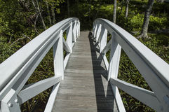 Bridge to Woods. This bridge crosses over a small brook Royalty Free Stock Photos