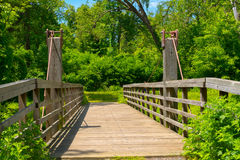 A Bridge to the Woods Stock Images