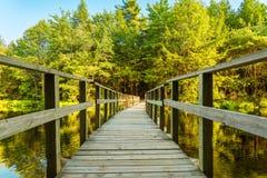 bridge trä Arkivbilder