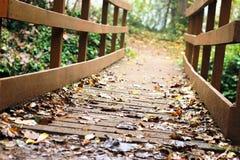 bridge trä Royaltyfri Foto