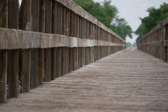 bridge trä Royaltyfria Foton