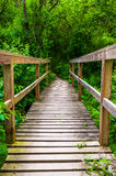 Bridge on a trail through the forest at Codorus State Park, Penn Stock Images