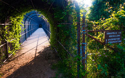 Bridge and trail junction along the Appalachian Trail. Royalty Free Stock Photo