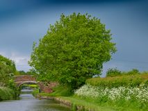 Bridge with tree Royalty Free Stock Images