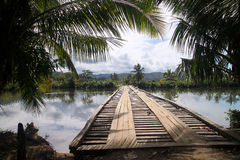 Bridge in tropics Royalty Free Stock Images