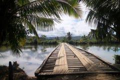 Bridge in tropics royalty free stock images