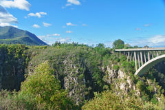 Bridge in Tsitsikamma national park Stock Photography