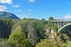 Bridge in Tsitsikamma national park. Garden route, South Africa Stock Photography
