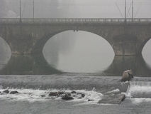 Bridge in Turin royalty free stock images