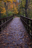 A Bridge Under Autumn Leaves Stock Photo