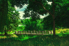 Bridge under the tree. Bridge under theg reen tree in summer park Royalty Free Stock Photo