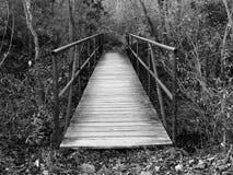 Bridge into the unknown Royalty Free Stock Photo
