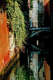 Bridge in Venice Stock Image