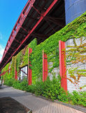Bridge and Vine covered wall along a boardwalk Royalty Free Stock Images